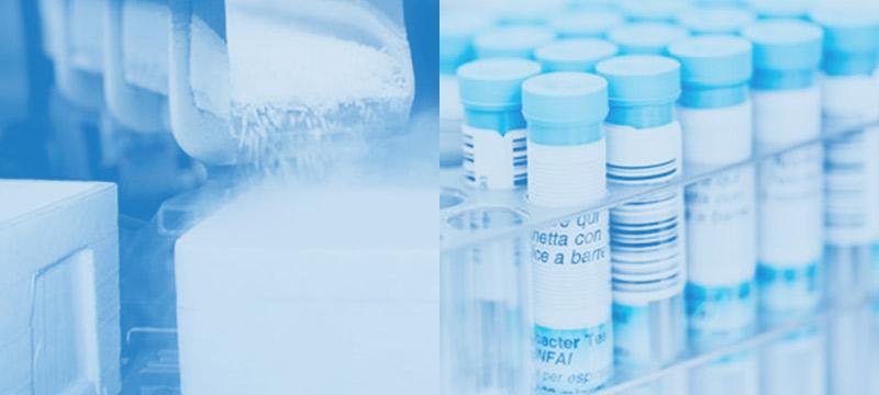teaser-trockeneis-impfstoffkuehlung
